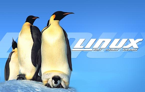 Mandriva Linux 2010 sera disponible mardi prochain - Association .